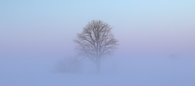 The foggy world we argue in